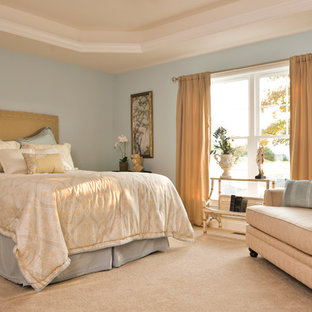 Bedroom - large craftsman master carpeted bedroom idea in Other with blue walls and no fireplace
