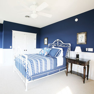 Bedroom - traditional bedroom idea in Other with blue walls