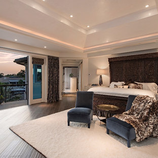 Inspiration for a large transitional master terra-cotta floor bedroom remodel in Tampa with white walls