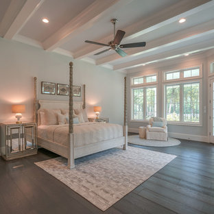 Inspiration for a large beach style master dark wood floor and brown floor bedroom remodel in Houston with blue walls and no fireplace