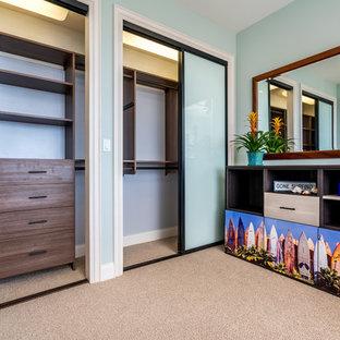 Modelo de habitación de invitados exótica, pequeña, con paredes azules y moqueta