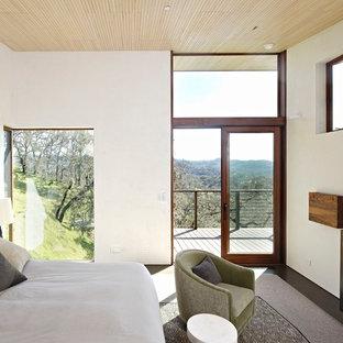 Großes Uriges Gästezimmer mit weißer Wandfarbe, Betonboden, Gaskamin, Kaminumrandung aus Beton und grauem Boden in San Francisco