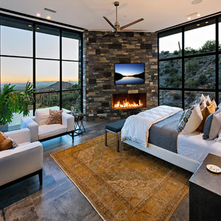 Example of a large trendy master porcelain floor bedroom design in Phoenix with a ribbon fireplace and a stone fireplace