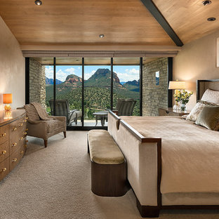Inspiration for a mid-sized southwestern master carpeted bedroom remodel in Other with beige walls