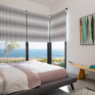 Mid-sized minimalist guest concrete floor and gray floor bedroom photo in Santa Barbara with white walls