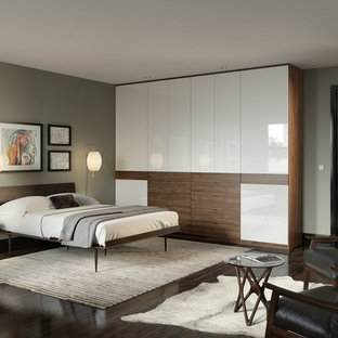 Inspiration for a large modern master dark wood floor and brown floor bedroom remodel in Miami with gray walls and no fireplace