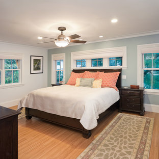 Example of a mid-sized eclectic guest bamboo floor bedroom design in Boston with blue walls