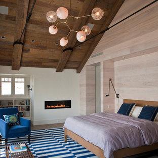 Esempio di una camera da letto stile marinaro con pareti bianche, parquet scuro e camino lineare Ribbon