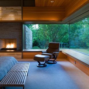 Immagine di una camera matrimoniale minimalista con camino classico, cornice del camino in pietra e moquette