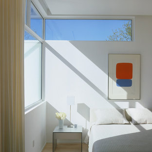 Example of a minimalist light wood floor bedroom design in Houston with white walls