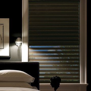 Hunter Douglas Silhouette® Window Shadings with A Deux System