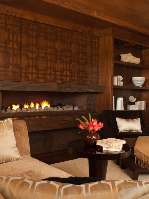 SaveEmail - Best Lennox Gas Fireplace Design Ideas & Remodel Pictures Houzz