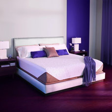 Contemporary Bedroom by iComfort Sleep System