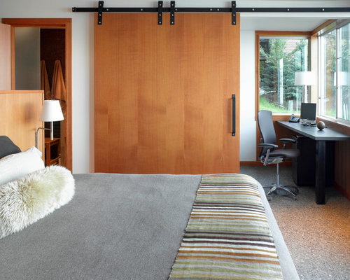 Large modern master bedroom idea in San Francisco with white walls & Door Partition   Houzz Pezcame.Com