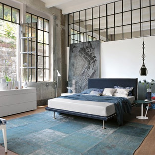 Foto di una camera da letto industriale