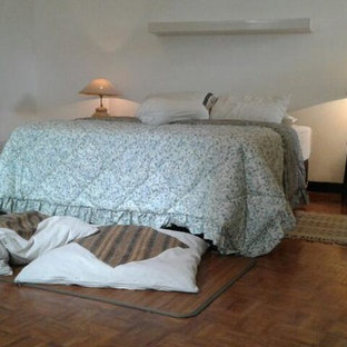 Bedroom - large 1960s loft-style plywood floor and brown floor bedroom idea in Other with white walls and no fireplace