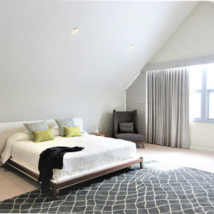 This is an example of an expansive modern loft-style bedroom in Perth with white walls, carpet and grey floor.