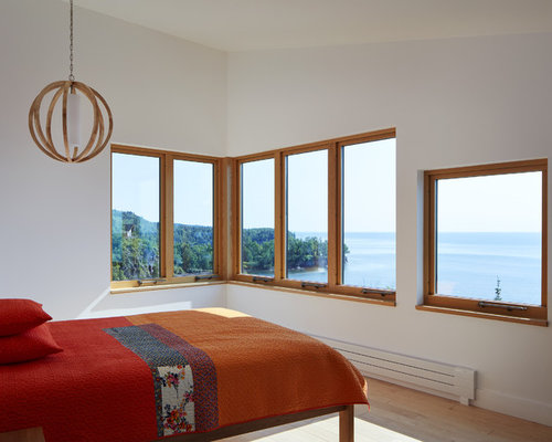 example of a coastal light wood floor bedroom design in minneapolis with white walls - Lake Home Design Ideas