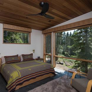 Ejemplo de dormitorio vintage, de tamaño medio, con paredes blancas, suelo de pizarra y suelo gris