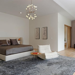 Inspiration for a contemporary master light wood floor bedroom remodel in San Diego with white walls and no fireplace