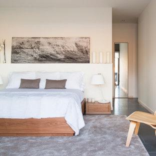 Ejemplo de dormitorio principal, contemporáneo, de tamaño medio, sin chimenea, con paredes blancas y suelo de pizarra