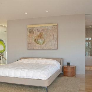 Foto di una camera matrimoniale minimalista di medie dimensioni con pareti bianche, parquet chiaro, camino lineare Ribbon, cornice del camino in pietra e pavimento multicolore