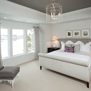 Inspiration for a transitional carpeted bedroom remodel in Minneapolis with white walls and no fireplace