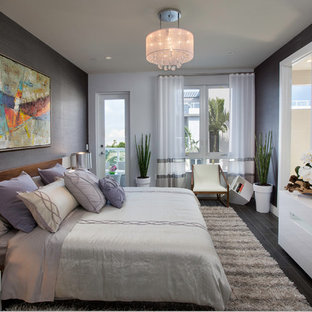 Example of a mid-sized trendy master dark wood floor bedroom design in Miami with gray walls
