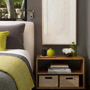 Bedroom - mid-sized contemporary master medium tone wood floor bedroom idea in San Francisco with gray walls