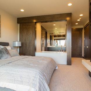 Imagen de habitación de invitados actual, de tamaño medio, con paredes blancas, moqueta, chimenea de doble cara y marco de chimenea de metal