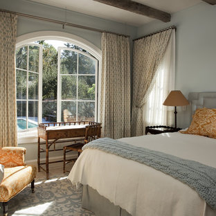 Medium sized mediterranean guest bedroom in New York with blue walls, limestone flooring, no fireplace, blue floors and a plastered fireplace surround.