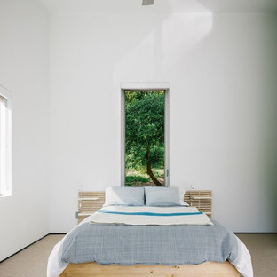 This is an example of a contemporary bedroom in San Francisco with carpet and white walls.