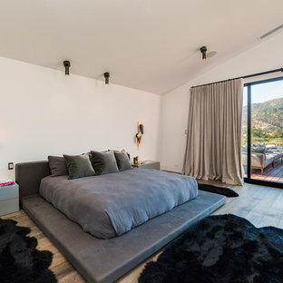 Example of a huge trendy master gray floor and medium tone wood floor bedroom design in Los Angeles with white walls, a ribbon fireplace and a concrete fireplace