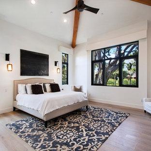 Пример оригинального дизайна: гостевая спальня среднего размера в современном стиле с белыми стенами, светлым паркетным полом, стандартным камином и фасадом камина из штукатурки