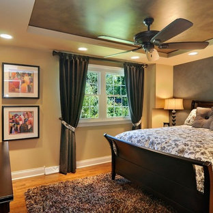 Bedroom - mid-sized eclectic master medium tone wood floor bedroom idea in Chicago with multicolored walls and no fireplace