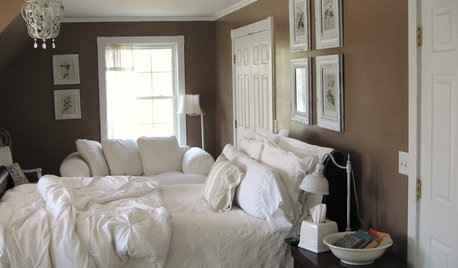 color on houzz brown decorating tips