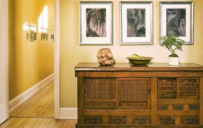 Zoom sur les bonsaïs : un art millénaire, porteur d'harmonie