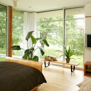 Design ideas for a mid-sized modern master bedroom in Other with light hardwood floors, white walls, no fireplace and brown floor.