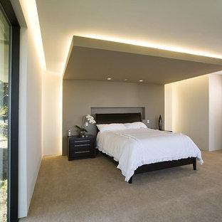 На фото: хозяйская спальня в современном стиле с белыми стенами и ковровым покрытием без камина с
