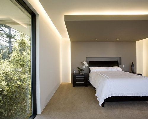 Trendy Master Carpeted Bedroom Photo In San Francisco With Gray Walls