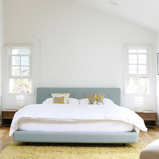 Ejemplo de dormitorio principal, minimalista, con paredes blancas y suelo de madera clara