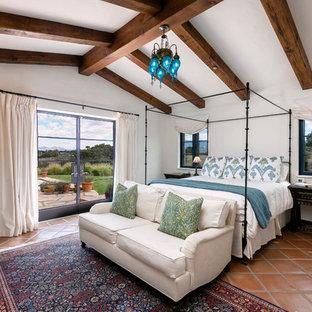 Идея дизайна: большая хозяйская спальня в средиземноморском стиле с белыми стенами, полом из терракотовой плитки и коричневым полом