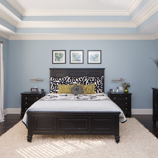 Example of a large classic master dark wood floor bedroom design in Chicago with blue walls