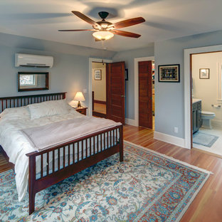 Example of a mid-sized arts and crafts master medium tone wood floor bedroom design in Other with blue walls