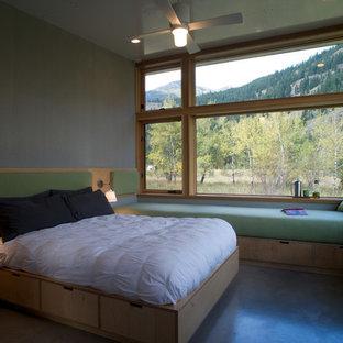 Diseño de dormitorio principal, actual, pequeño, sin chimenea, con suelo de cemento y paredes grises
