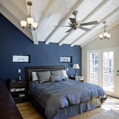Example of a classic light wood floor bedroom design in San Francisco with blue walls and no fireplace