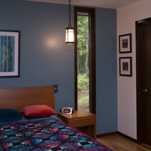 Inspiration for a large eclectic master medium tone wood floor and orange floor bedroom remodel in Raleigh with multicolored walls