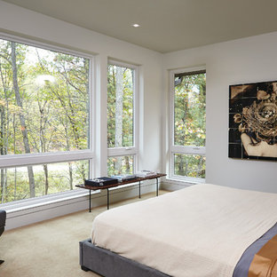 Example of a 1950s carpeted bedroom design in Grand Rapids with white walls