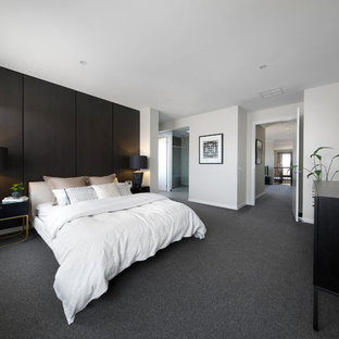Inspiration for a contemporary master bedroom in Melbourne with black walls and carpet.