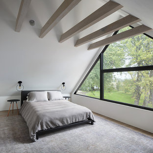 Inspiration for a modern master light wood floor and beige floor bedroom remodel in Milwaukee with white walls